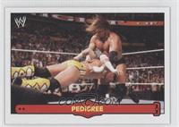 Pedigree (Triple H)