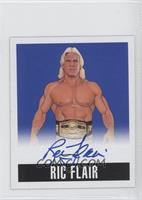 Ric Flair /25