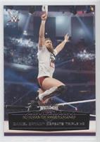 Daniel Bryan Defeats Triple H