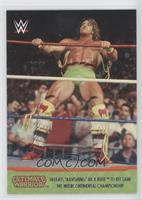 Ultimate Warrior Defeats