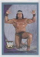 Jimmy Snuka /2010