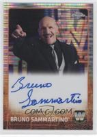 Bruno Sammartino /75