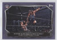Rob Van Dam, Chris Jericho, Triple H, Booker T, Kane, Shawn Michaels /50