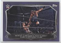 Rob Van Dam, Chris Jericho /50