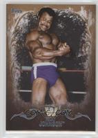 Rocky Johnson /10