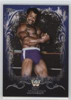 Rocky Johnson /25