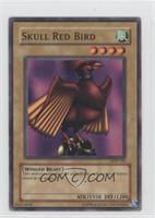 Skull Red Bird