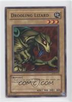 Drooling Lizard