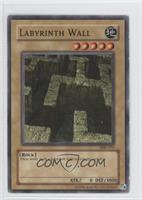 Labyrinth Wall