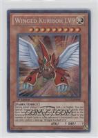 Winged Kuriboh LV9