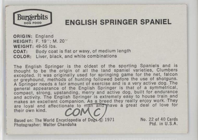 1971 Burgerbits Dog Food 22 English Springer Spaniel Non Sports