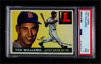 Ted Williams [PSA 7 NM]