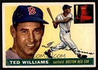 Ted Williams [VGEX]