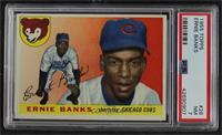 Ernie Banks [PSA7NM]