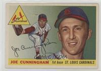 Joe Cunningham