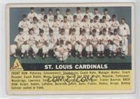 St. Louis Cardinals Team (Gray Back)
