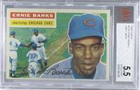 Ernie Banks (Gray Back) [BVG 5.5 EXCELLENT+]