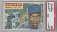 Ernie Banks (White Back) [PSA 7 (OC)]