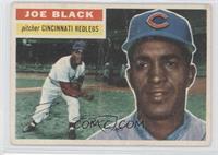 Joe Black (Gray Back)
