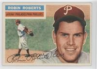 Robin Roberts (Gray Back)
