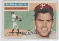 Robin Roberts (White Back)
