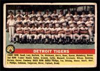 Detroit Tigers Team [FAIR]