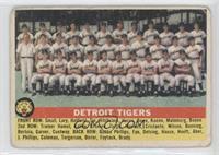 Detroit Tigers Team [PoortoFair]