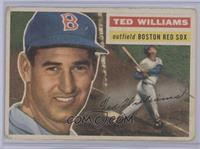 Ted Williams (Gray Back) [Poor to Fair]