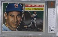 Ted Williams (Gray Back) [BVG 4.5 VG‑EX+]