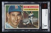Ted Williams (White Back) [BVG 5 EXCELLENT]