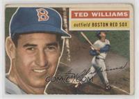 Ted Williams (White Back) [NonePoortoFair]