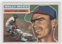 Wally Moon (Gray Back)