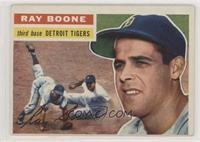 Ray Boone (Gray Back)