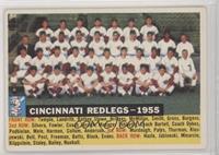 Cincinnati Redlegs Team (White Back, Team Name and Year)