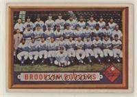 Scarce Series - Brooklyn Dodgers Team