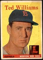 Ted Williams [FAIR]
