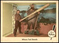 Where Ted Stands (Ted Williams) [NM+]