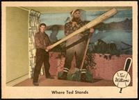 Where Ted Stands (Ted Williams) [NMMT]