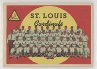 St. Louis Cardinals Team (White Back)