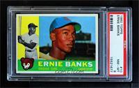 Ernie Banks [PSA8NM‑MT]