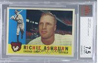 Richie Ashburn [BVG7.5]