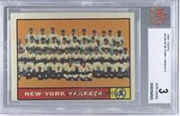 New York Yankees Team [BVG3]