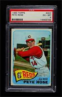 Pete Rose [PSA 6 EX‑MT]
