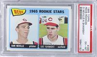 1965 Rookie Stars Reds (Dan Neville, Art Shamsky) [PSA6]