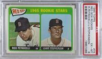 1965 Rookie Stars - Rico Petrocelli, Jerry Stephenson [PSA6EX‑…