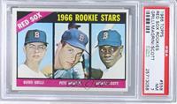 Red Sox Rookies (Guido Grilli, Pete Magrini, George Scott) [PSA7]