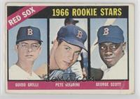 Red Sox Rookies (Guido Grilli, Pete Magrini, George Scott) [PoortoF…