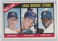 Red Sox Rookies (Guido Grilli, Pete Magrini, George Scott) [Poor]