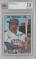 Joe Morgan [BVG7.5NEARMINT+]