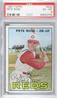 Pete Rose [PSA6EX‑MT]